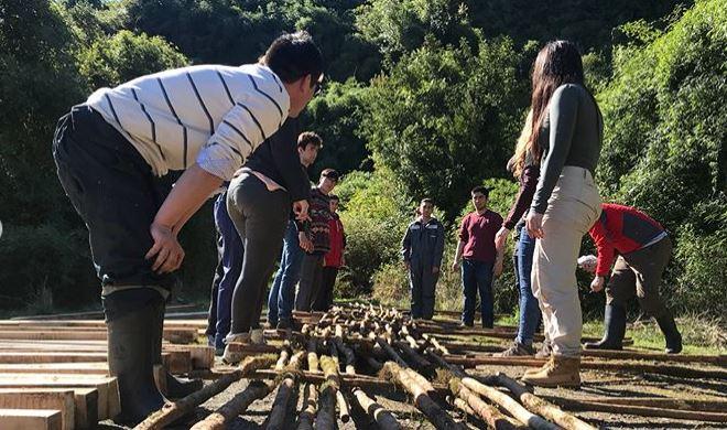 Experiencia Detonante II / Mirador Coquihuil - San Juan Chiloé